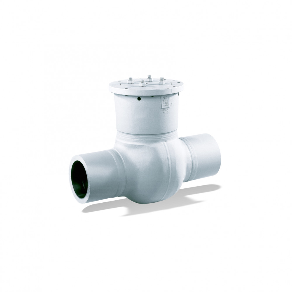 AKR/AKRS Swing check valve
