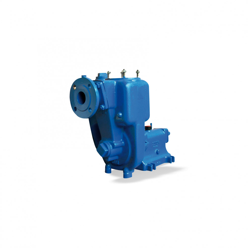 AU Dry-installed pump