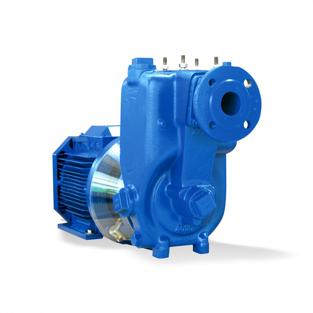 AU Monobloc Dry-installed pump