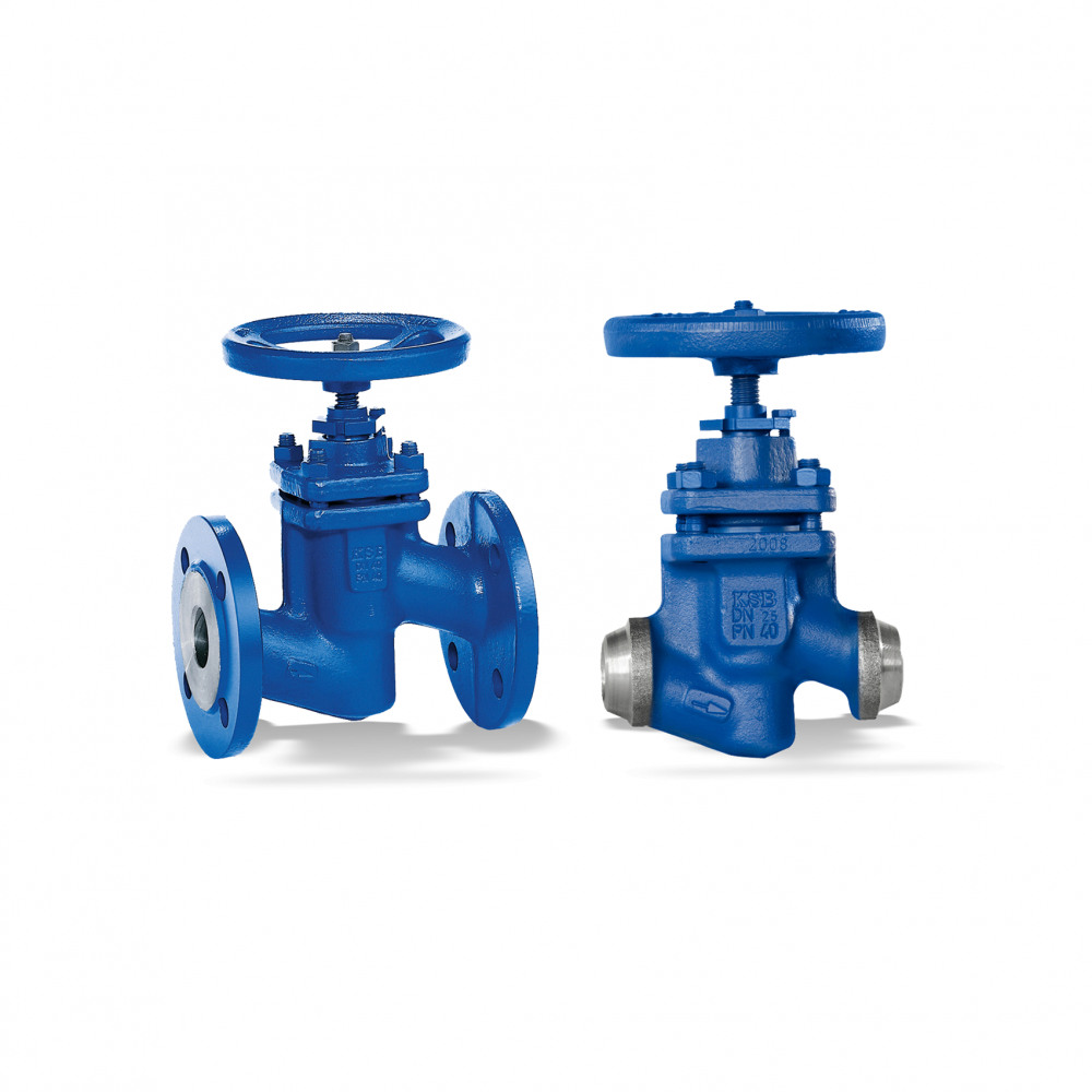 BOA-H/HE/HV/HEV Globe valve