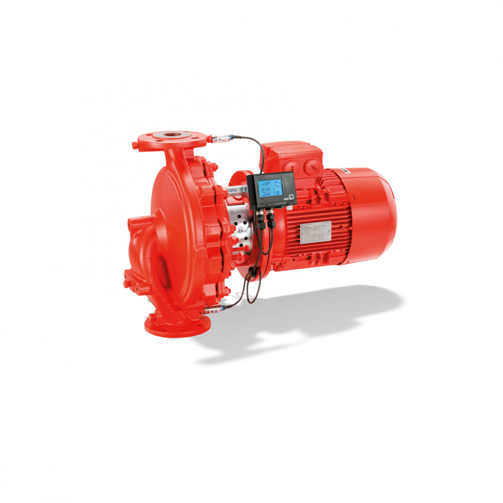Etaline Dry-installed pump