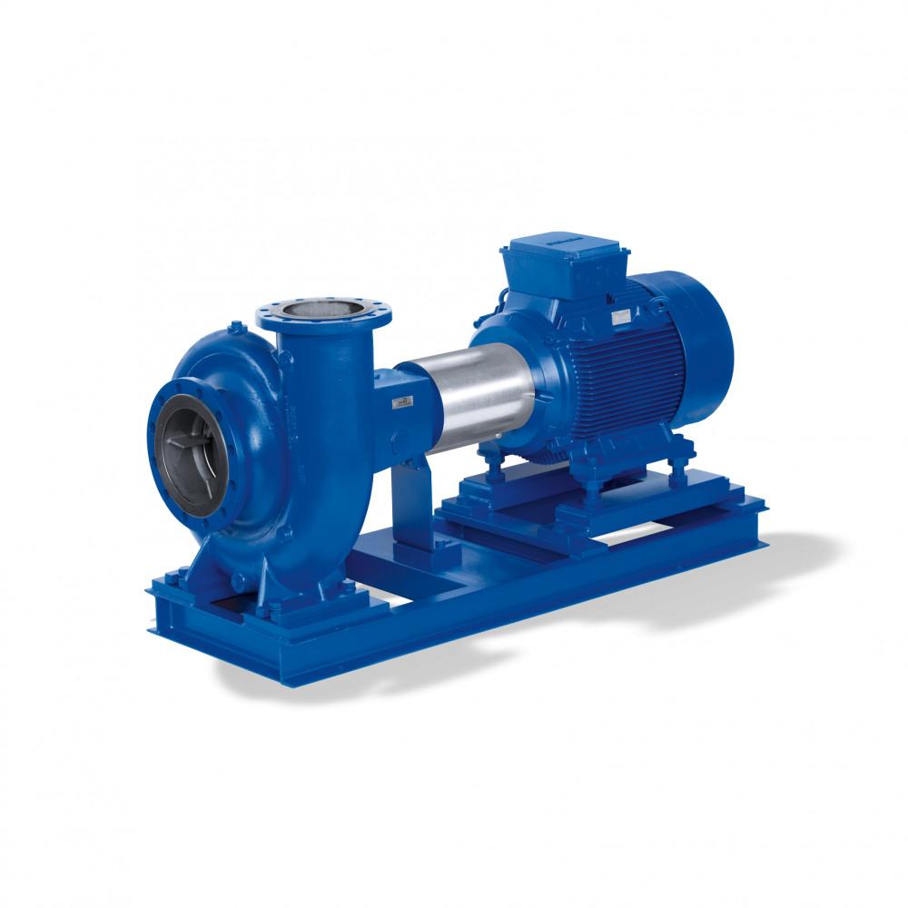 Etanorm-R Trocken aufgestellte Pumpe