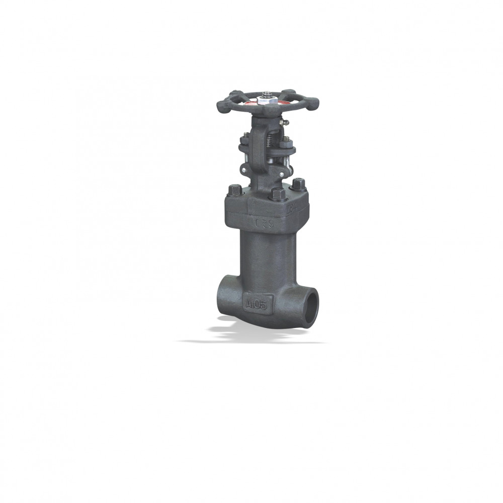 ECOLINE GLB 800 Globe valve