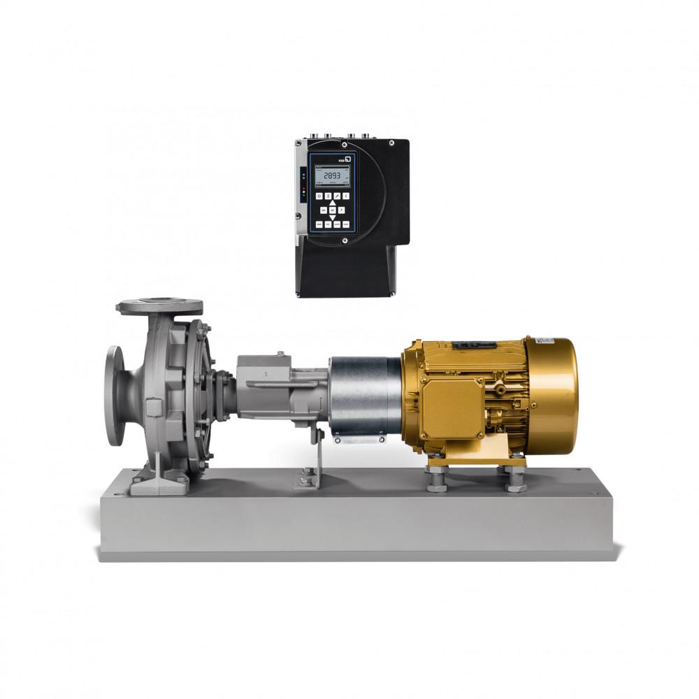 Etanorm-RSY Dry-installed pump