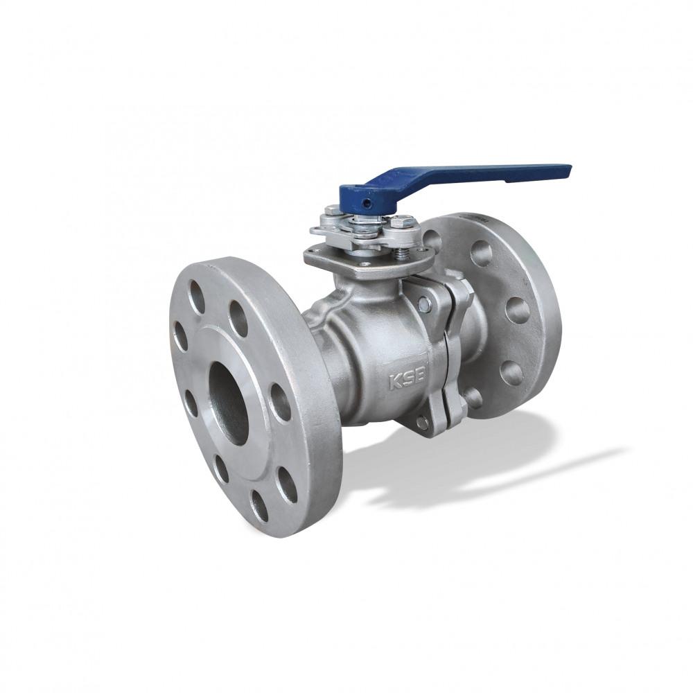 ECOLINE BLT 150-300 Ball valve
