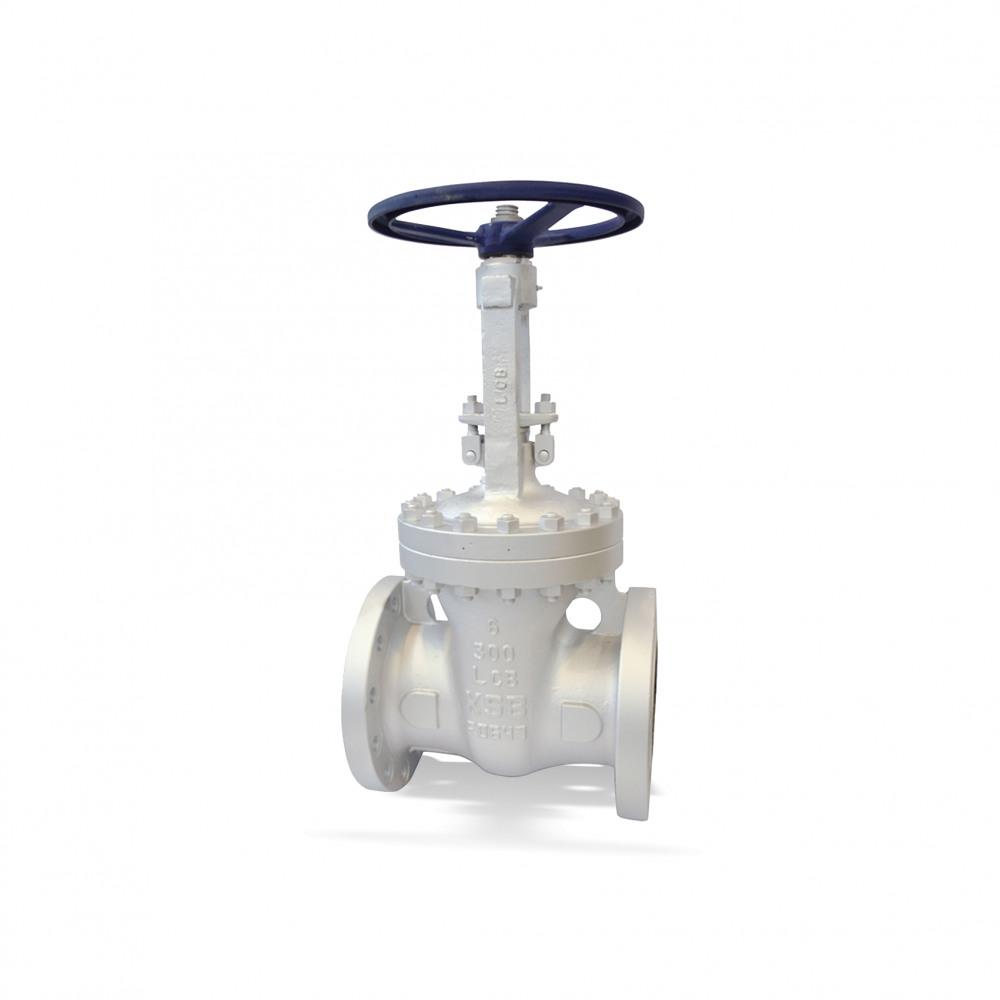 ECOLINE GTC 150-600 Gate valve