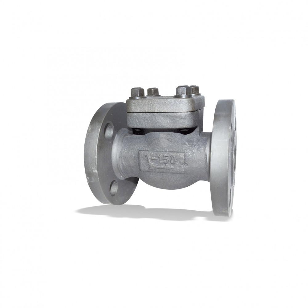 ECOLINE PTF 150-600 Lift check valve