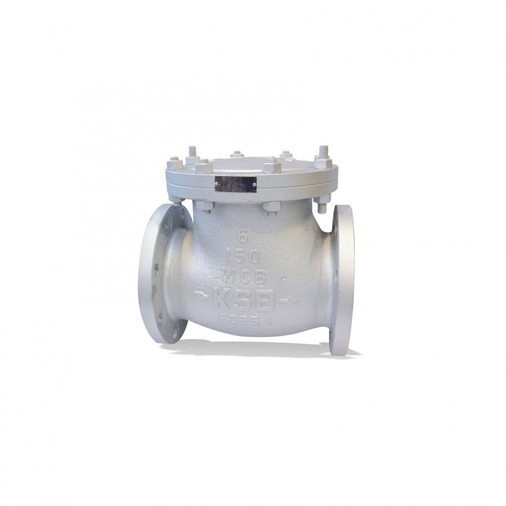 ECOLINE SCC 150-600 Swing check valve