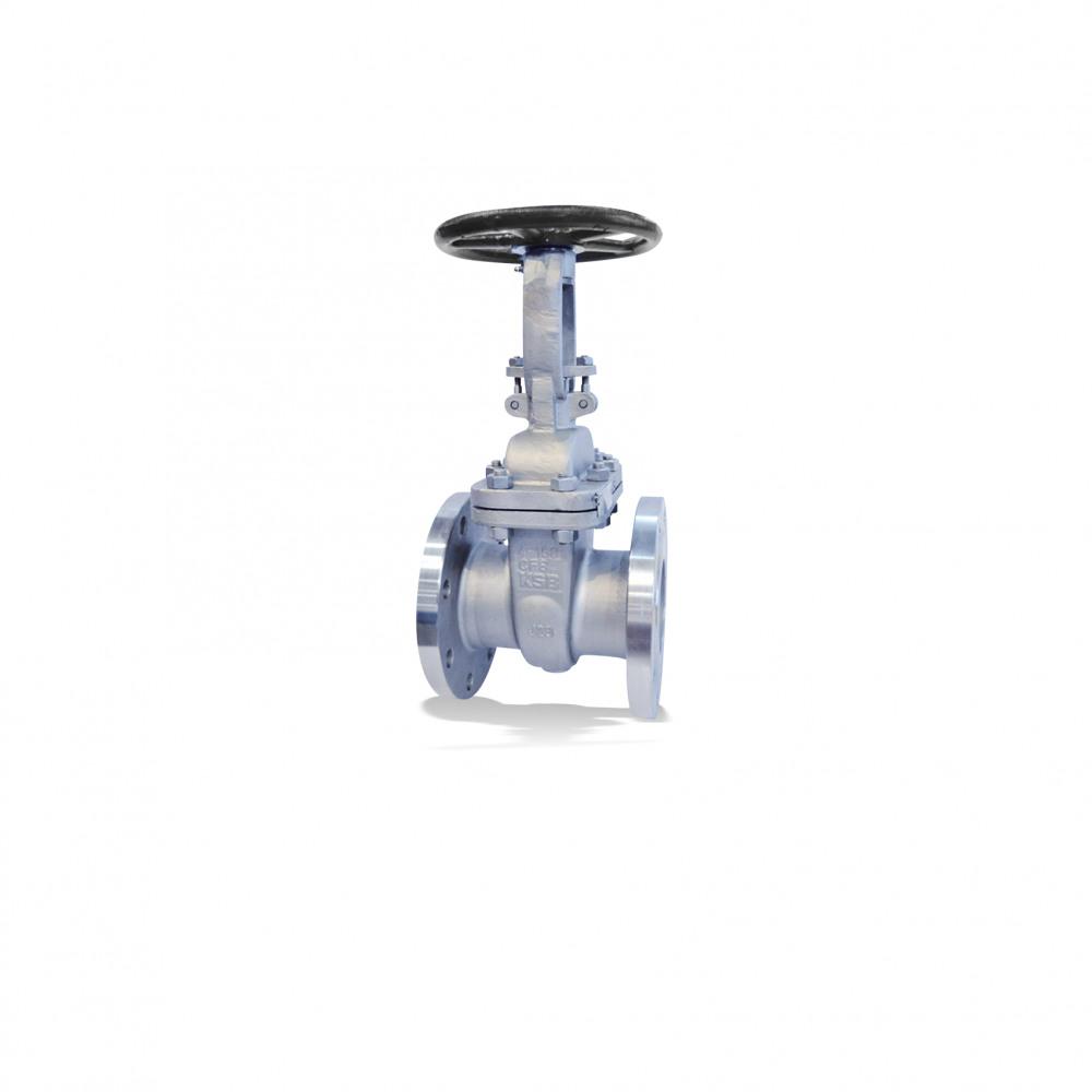 ECOLINE GTV 150-600 Gate valve