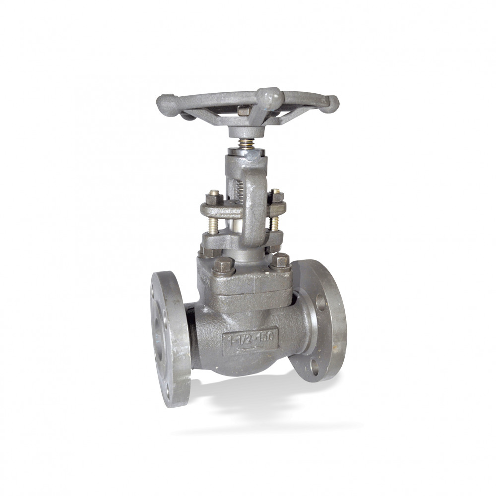 ECOLINE GLF 150-600 Globe valve