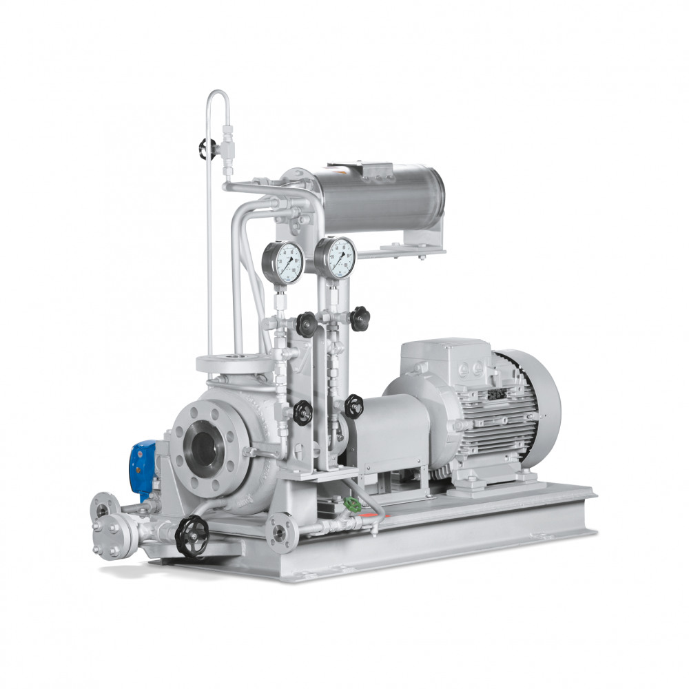 HPH Dry-installed pump