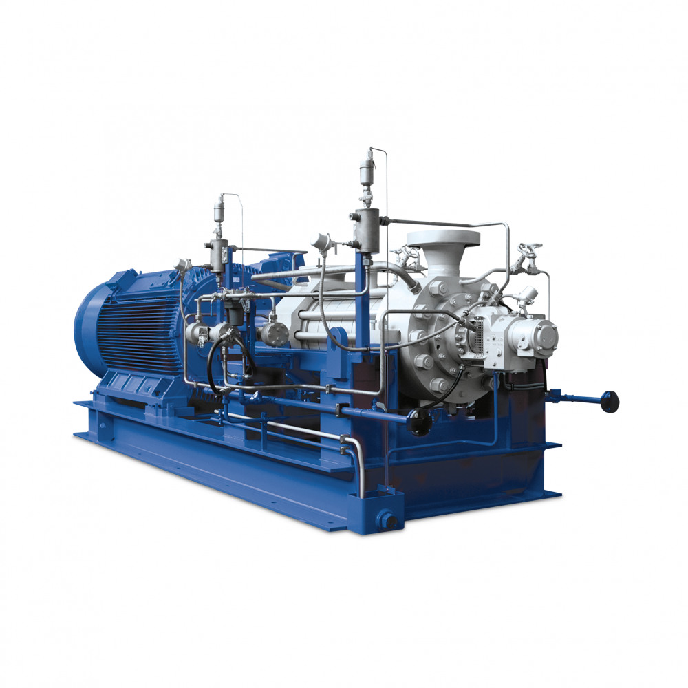 HGD Ring-section pump