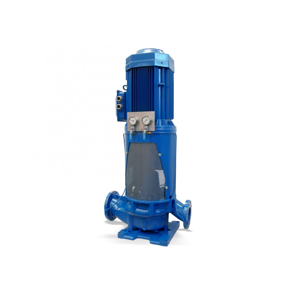 ILN Dry-installed pump