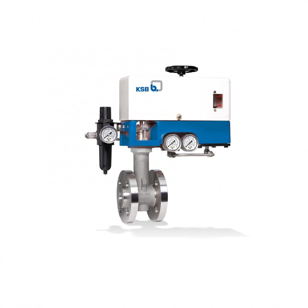 MIL 29000 Globe valve