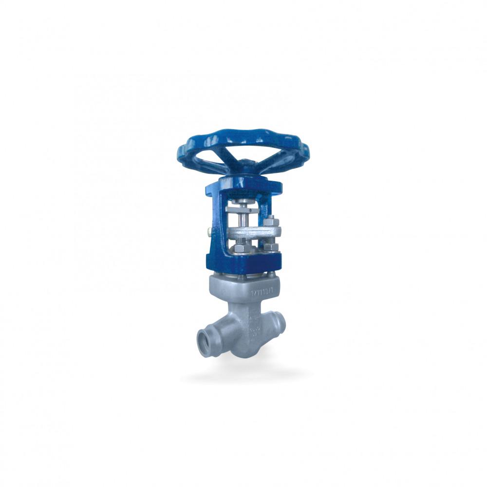 NUCA-A 320 Type II Globe valve