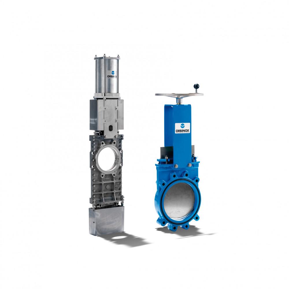 Orbinox Gate valve