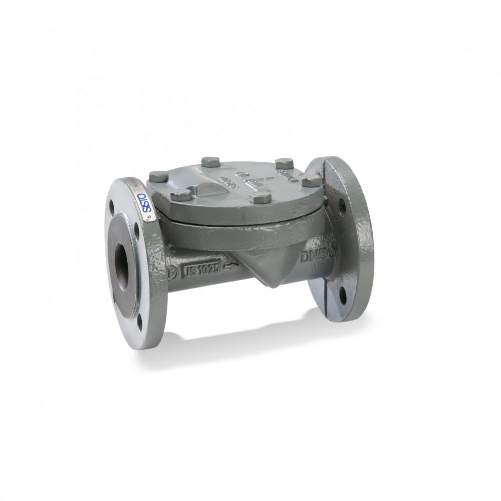 SISTO-RSKNA Swing check valve