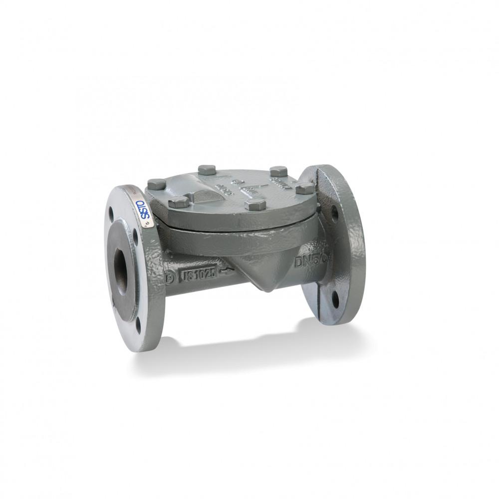 SISTO-RSKS Swing check valve