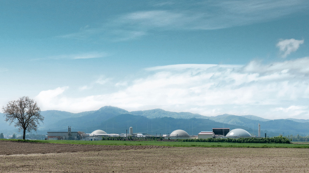 Biomassakraftverk