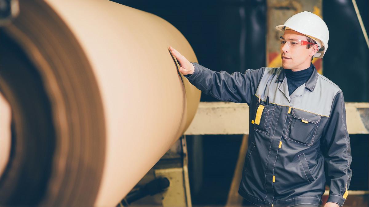 Sodelavec v proizvodnji papirja
