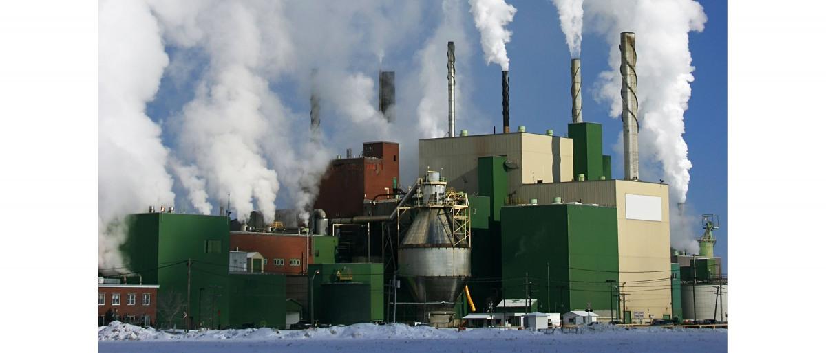 Papier- en pulpfabriek