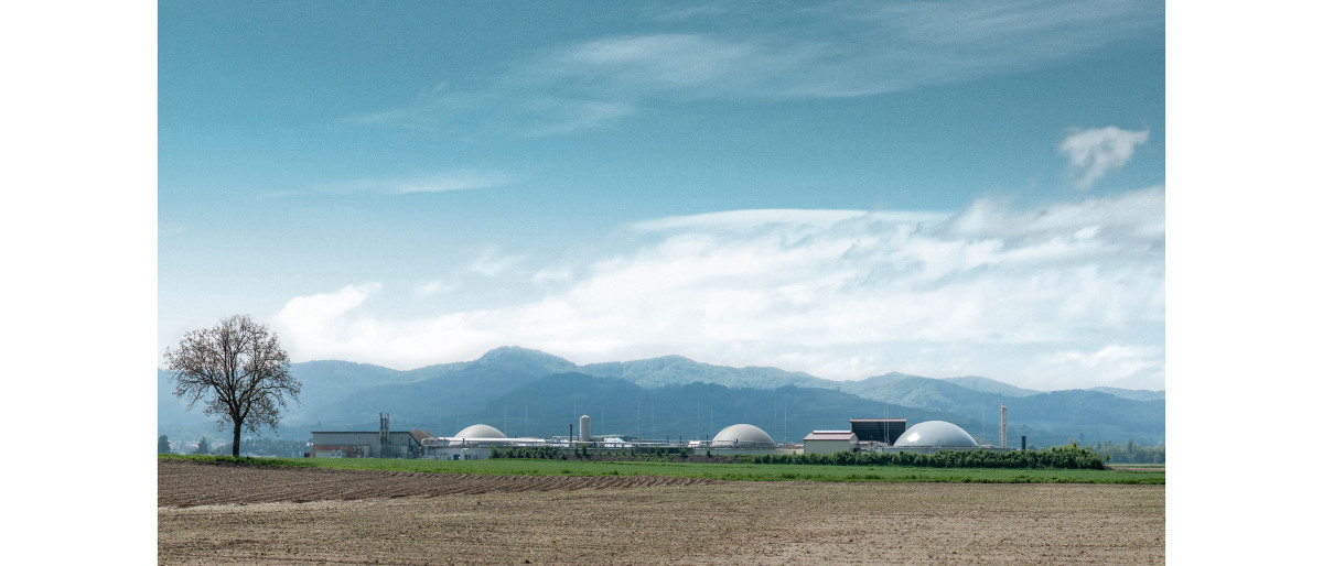 Planta de biomasa