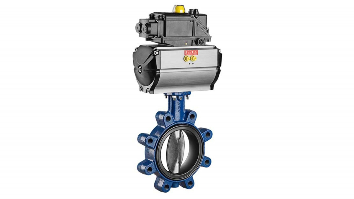 Butterfly valves for food applications