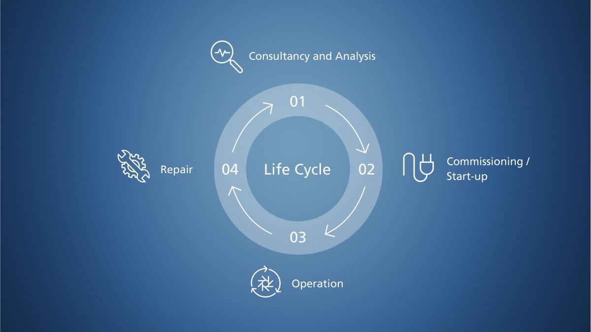 Representación de las fases de la vida del producto